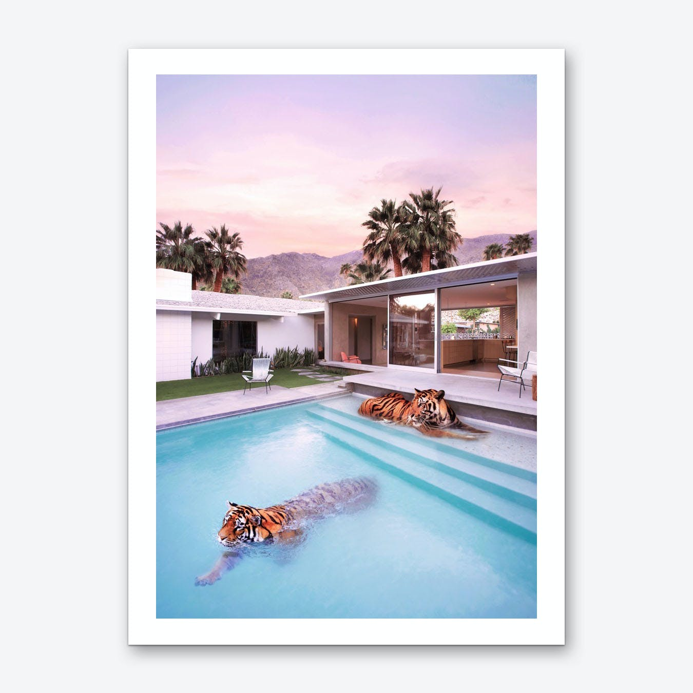 Palm Springs  Art Print
