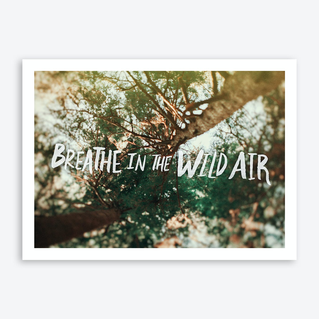 Breathe In The Wild Air Print