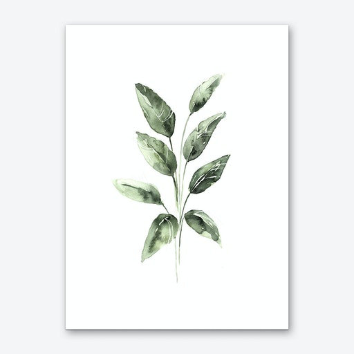 Spring Leaves Art Print