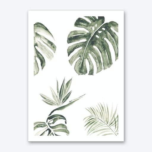 Tropic Print