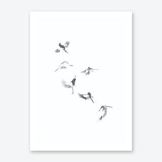 Flight Of Six Art Print