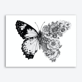 Butterfly in Bloom II Art Print