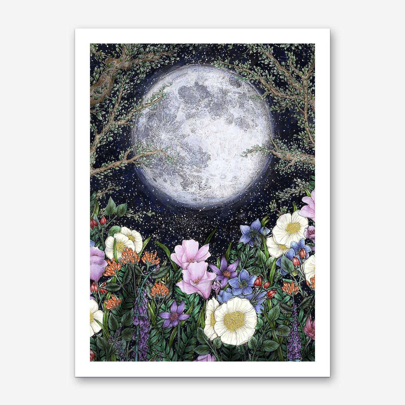 Midnight in the Garden II Art Print