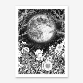 Midnight in the Garden Art Print