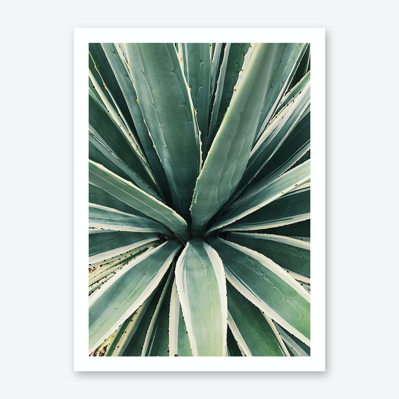 Greens Print