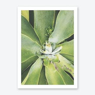 Verde Art Print