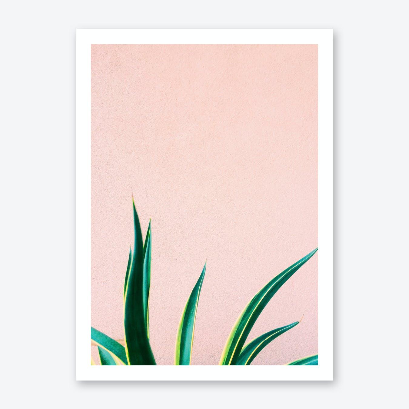 Jungalow Vibe Print