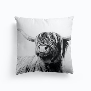 Highland Cattle Cushion