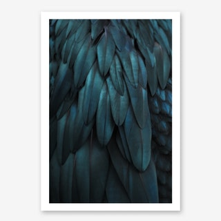 Dark Feathers in Art Print