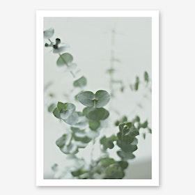 Eucalyptus II Greenery I in Print