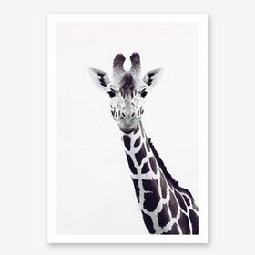 Giraffe Portrait in Art Print