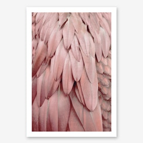Parrot Feathers Pastel in Art Print