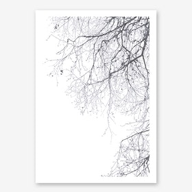 Black Branches 23 in Art Print