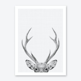 Deer Portrait Art Print