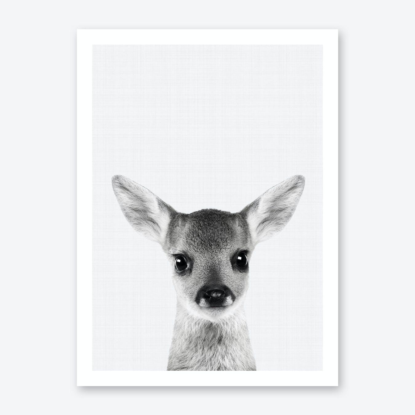 Fawn Portrait Print