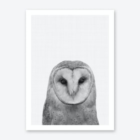 Owl Portrait Print