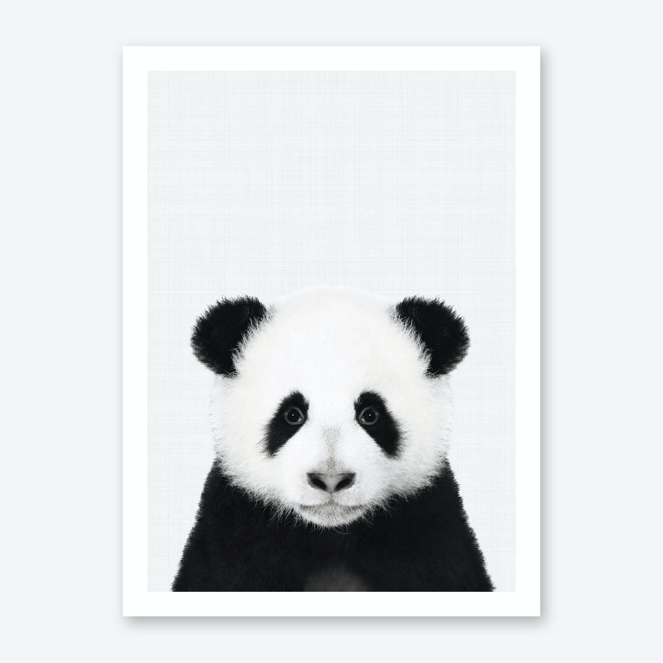 Panda Portrait Print