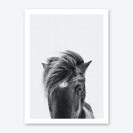 Pony Portrait Print