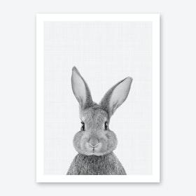 Rabbit Portrait Print