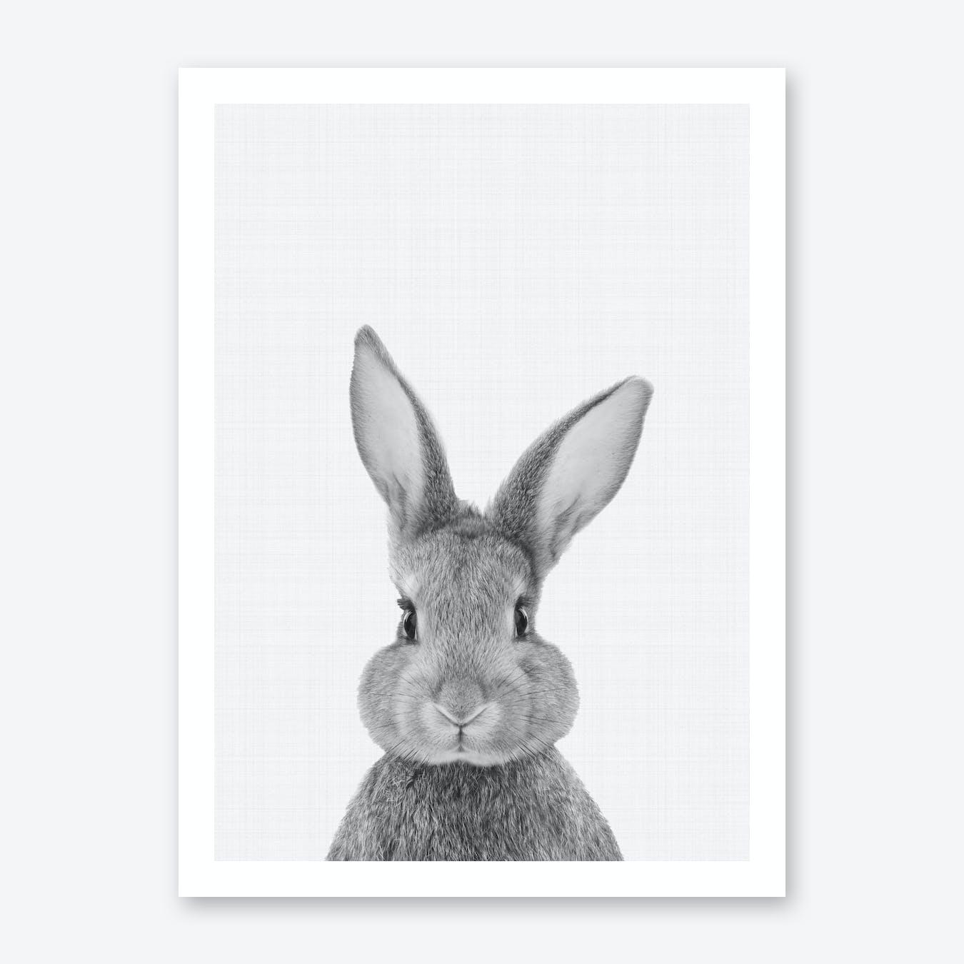 Rabbit portrait print by vivid atelier fy