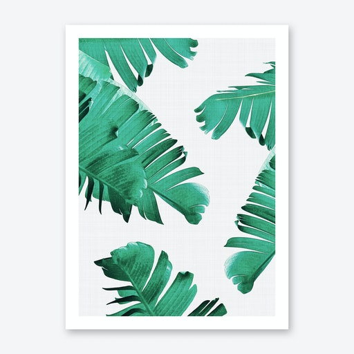Tropical 2 Print
