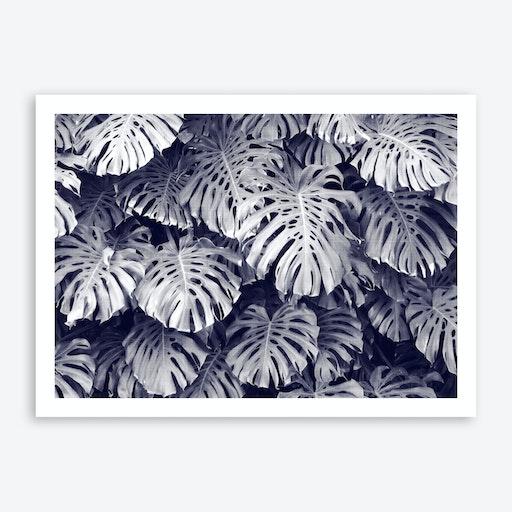 Tropical 3 Print