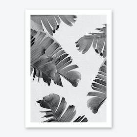 Tropical 4 Art Print