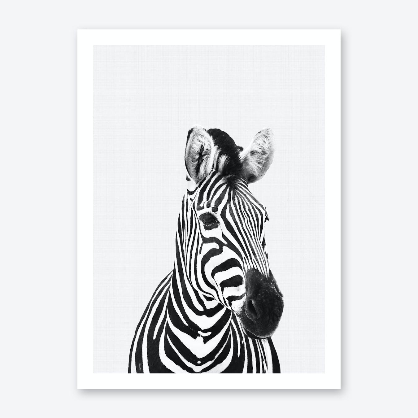 Zebra Portrait Print