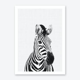 Zebra Portrait Art Print