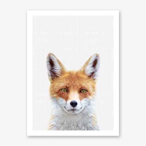 Fox II