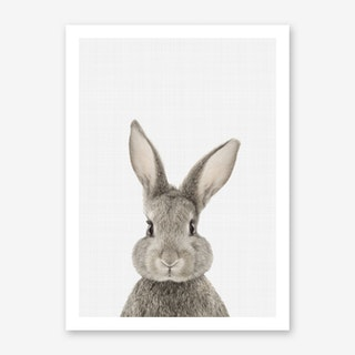 Rabbit II Art Print