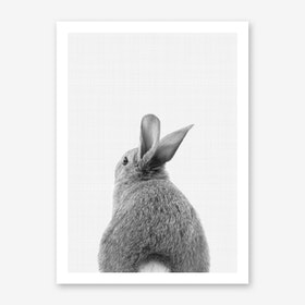 Rabbit Tail Art Print