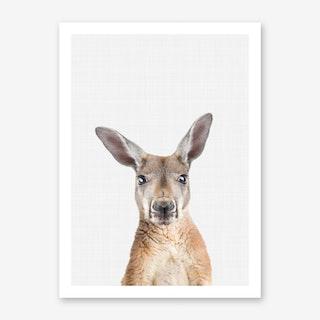Kangaroo Portrait II Art Print