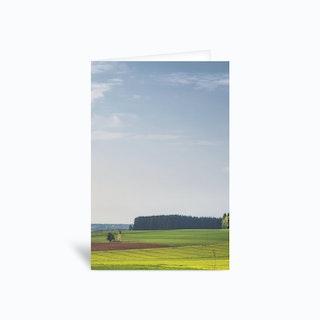 Spring Greens Greetings Card