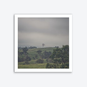 Tree On Top 2 Art Print