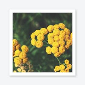 Infinit Blossom Art Print
