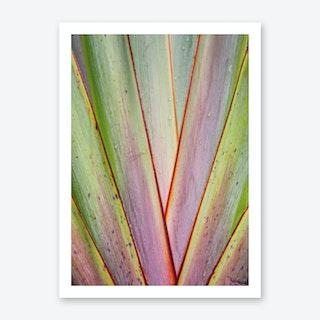 Flax Pattern Art Print