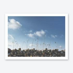 Logs & Reed Art Print