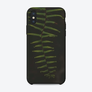 Fern I iPhone Case