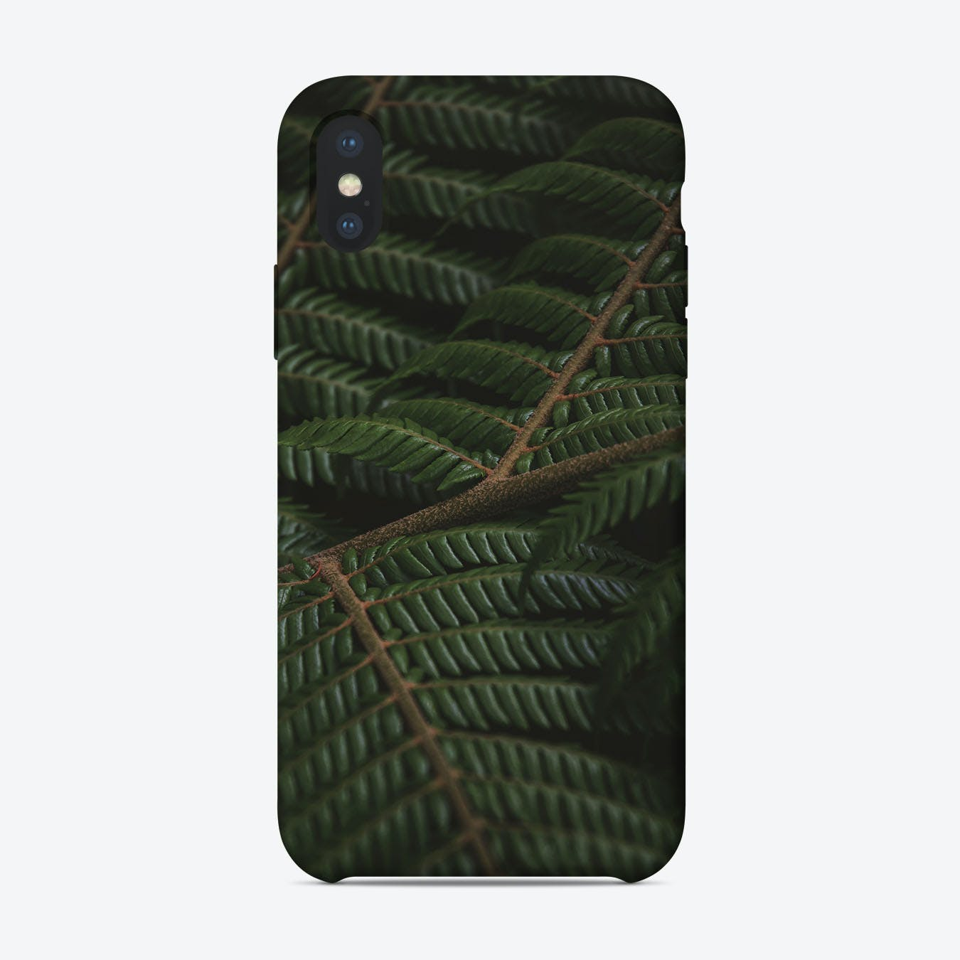 Fern III iPhone Case