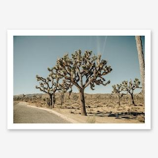 Mojave Art Print