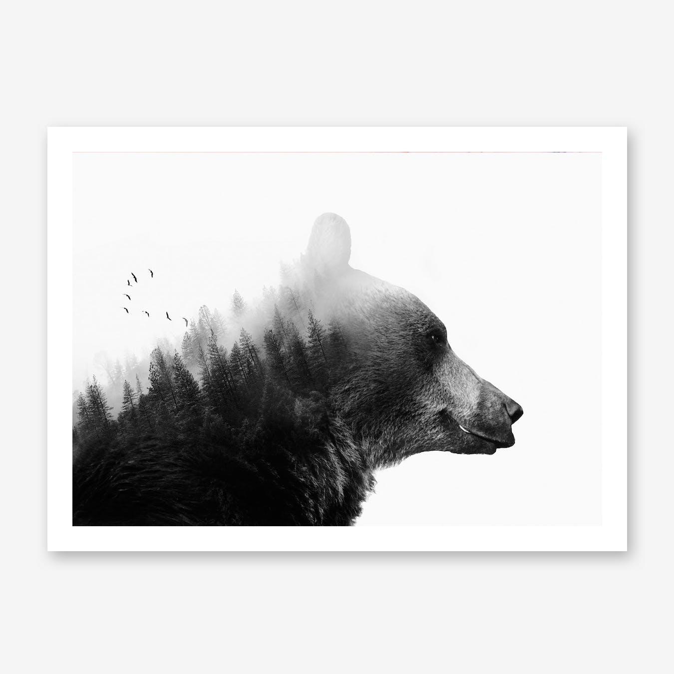 Big Bear Print