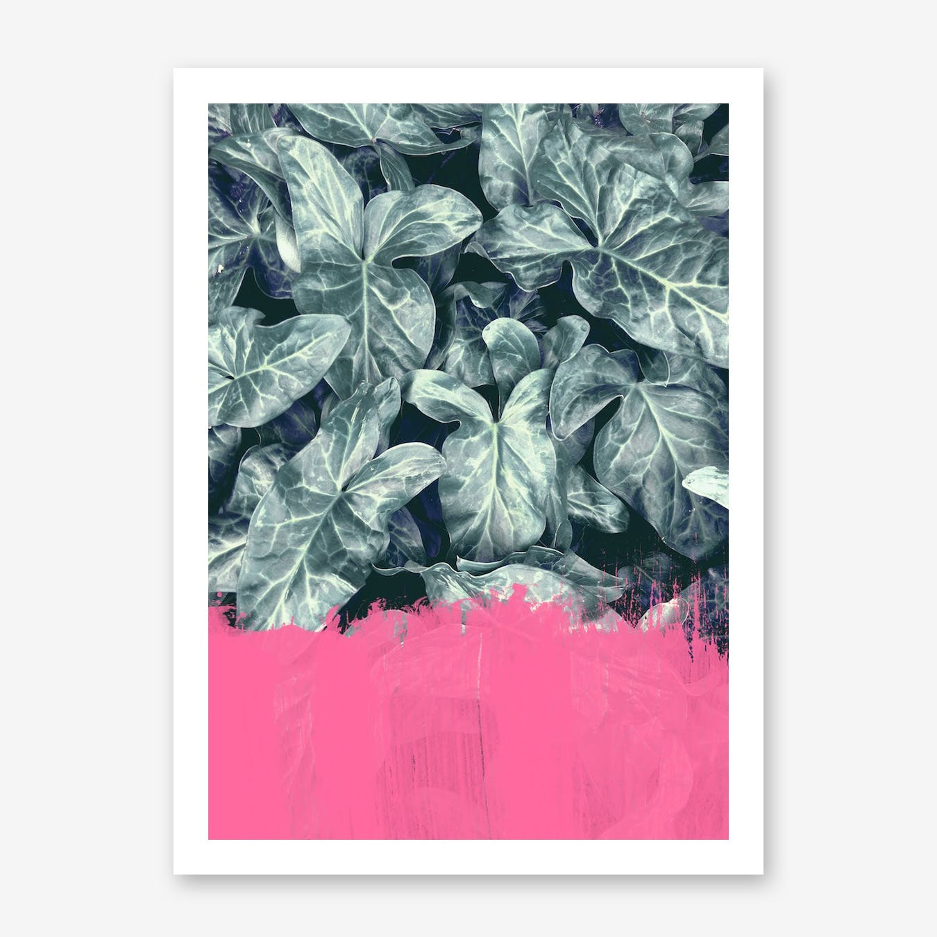 Pink Sorbet On Jungle Print