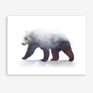 Bear On Wild Art Print