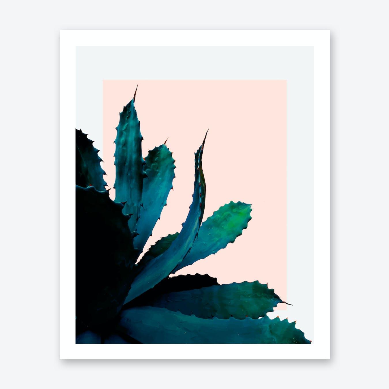 Cactus Southwestern Print