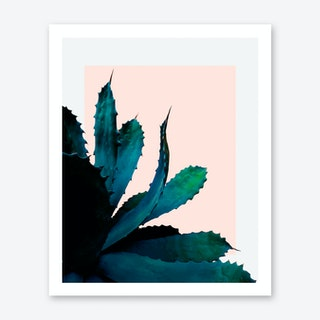 Cactus Southwestern Art Print