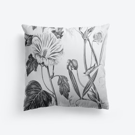 Annual Lavatera Blue Lathyrus Cushion