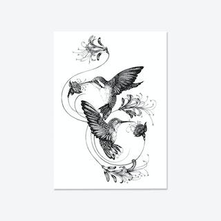 Hummingbirds & Honeysuckle Fine Art Print