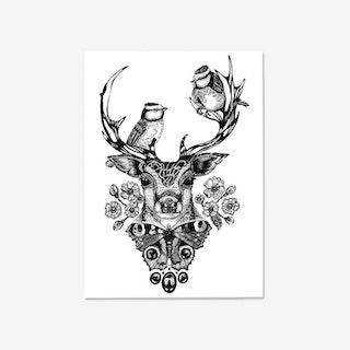 The Roe Deer Fine Art Print