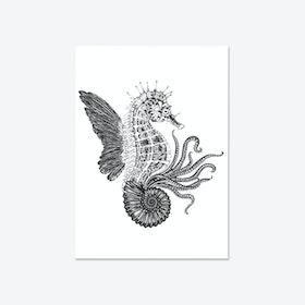 Ammonautilae Fine Art Print